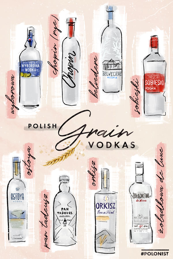 Hand drawn illustration / infographic depicting Polish grain vodkas (wheat, rye etc.): Wyborowa, Chopin, Sobieski, Ostoya, Pan Tadeusz, Orkisz, Żołądkowa de luxe. Illustrated by Kasia Kronenberger.