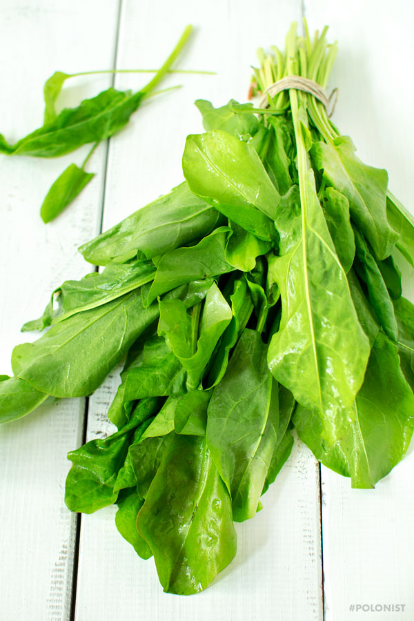 A bunch of fresh sorrel leaves on a white wooden table/surface.