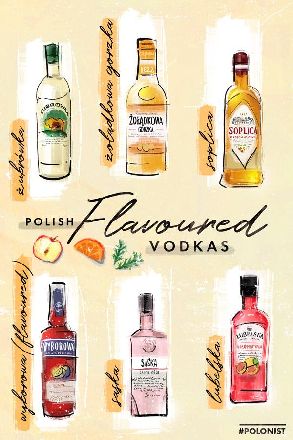 Hand drawn illustration / infographic depicting Polish flavoured vodkas (wheat, rye etc.): Żurbówka Bison Grass, Żołądkowa gorzka, Soplica smakowa, Wyborowa smakowa, Saska, Lubelska. Illustrated by Kasia Kronenberger.