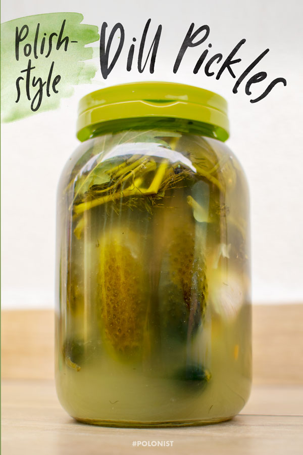 [Recipe in English] Polish pickles in brine: ogórki kiszone. Taste of summer hidden away in a jar. #polishrecipes #cucumbers #polonist #pickles #fermentation